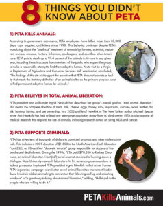 8 Things You Didn't Know About PETA